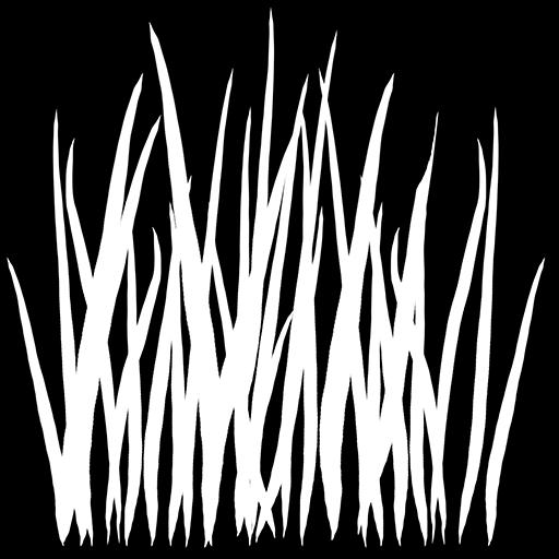 T_grass